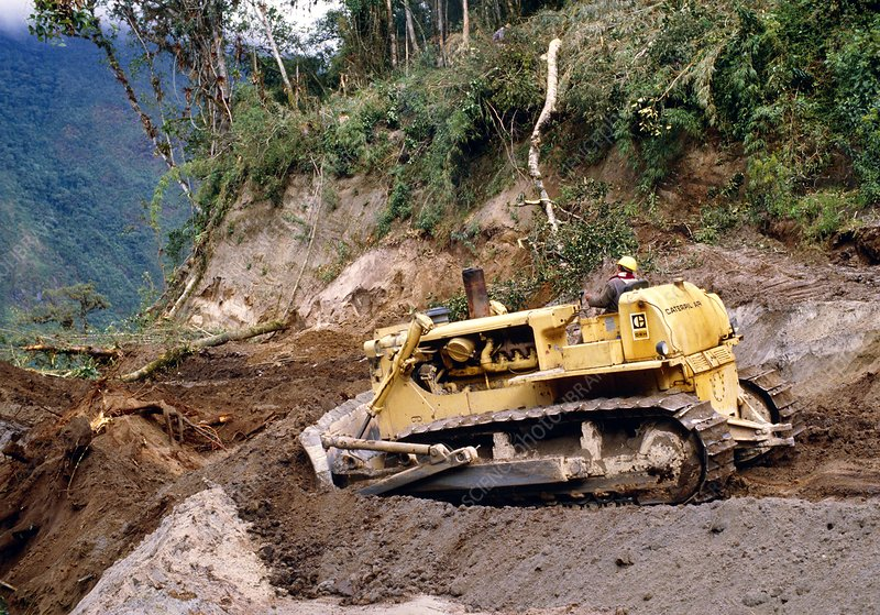 Road construction through rainforest