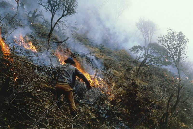 Farmers burning down the cloudforest near Cuenca
