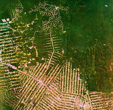 Deforestation in Brazil, from space