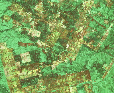 Satellite view of deforestation in Brazil