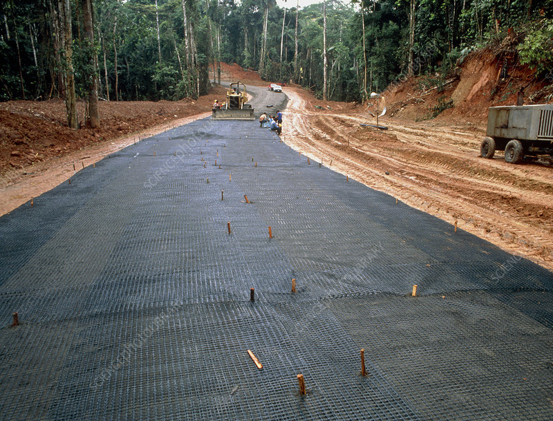 Building a road through the Ecuadorian Amazon