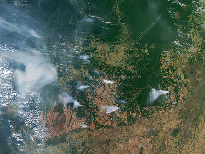 Amazon Basin forest fires