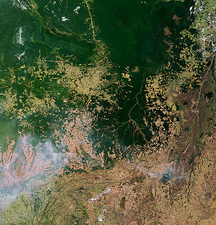 Deforestation in Brazil (1 of 2)