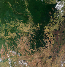 Deforestation in Brazil (2 of 2)