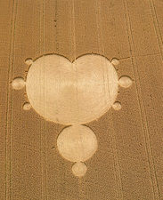 Crop formation in form of Mandelbrot set