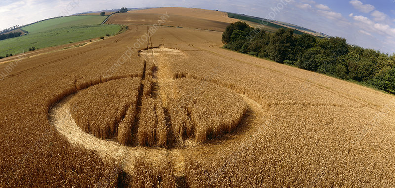 Crop formation, Lockeridge, Wiltshire