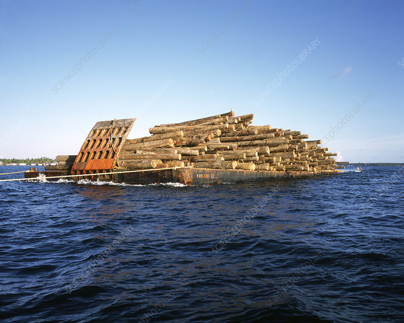 Barge laden with timber, Malaysia