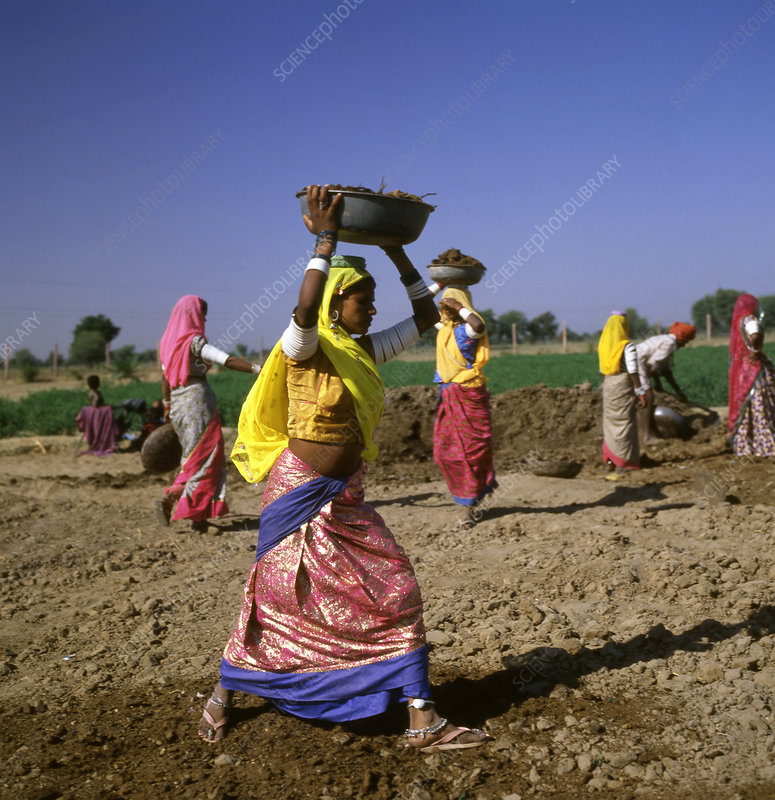 Indian Farmworkers