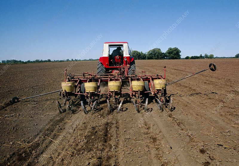 Tractor sowing seeds, Argentina