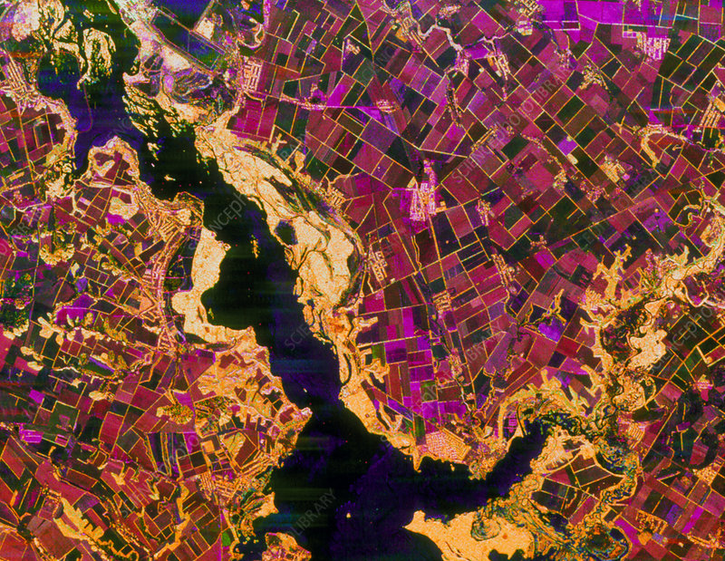 Coloured radar image of agriculture in the Ukraine