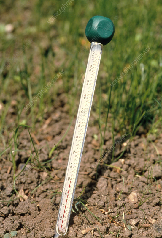 Thermometer for measuring soil temperatures