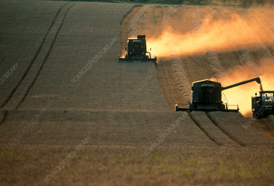 Combine harvesters and tractor working in a field