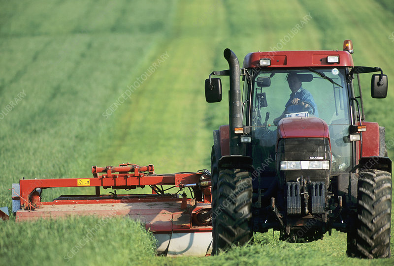 Tractor cutting grass for silage