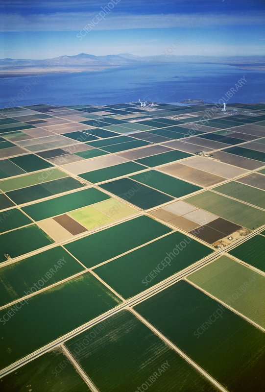 Farmland in southern California