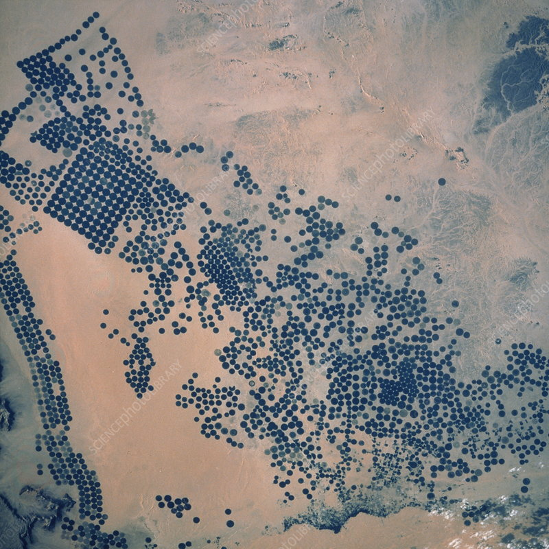 Shuttle photograph of irrigation in Saudi Arabia