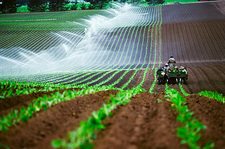 Planting and irrigating