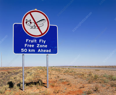 Fruit fly free zone road sign, Australia