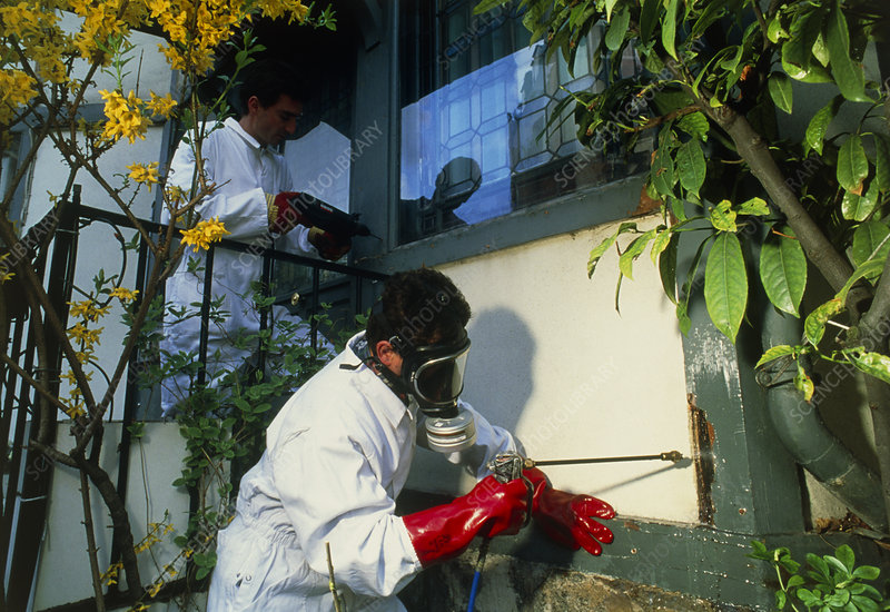 Male technicians treating a house for termites