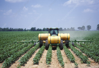Herbicide application