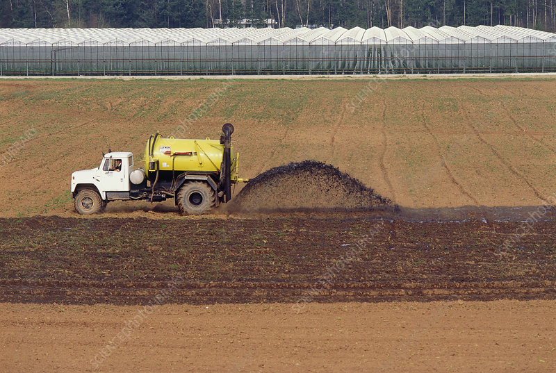 A tractor spreading pig manure on a field