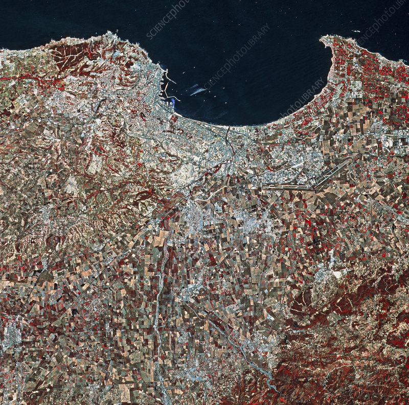 Coloured SPOT-1 satellite image of Algiers