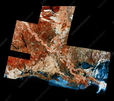 Satellite mosaic of New Orleans, USA
