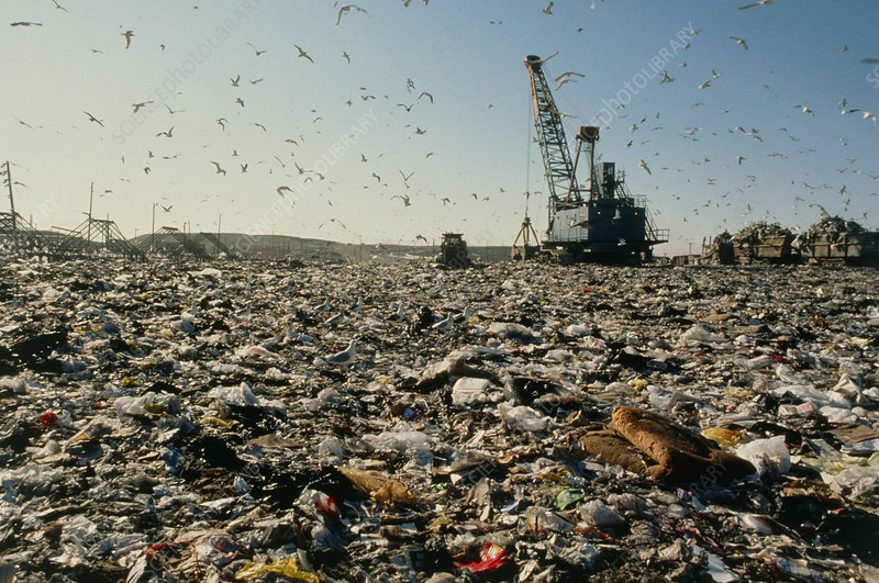 View of a rubbish dump
