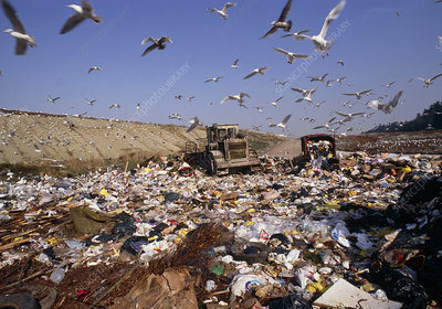 View of a waste landfill site