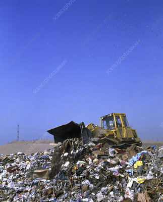 Landfill site with bulldozer levelling refuse