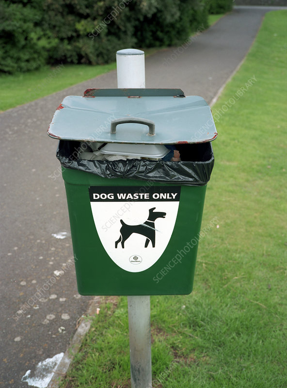 Bin for dog waste