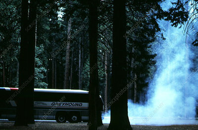 Diesel fumes from bus in Yosemite National Park