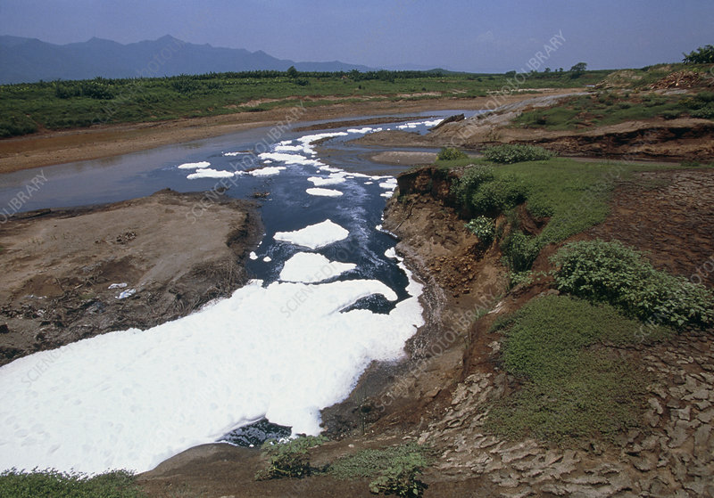 River polluted by effluent from a paper mill