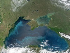 Algal blooms in the Black Sea