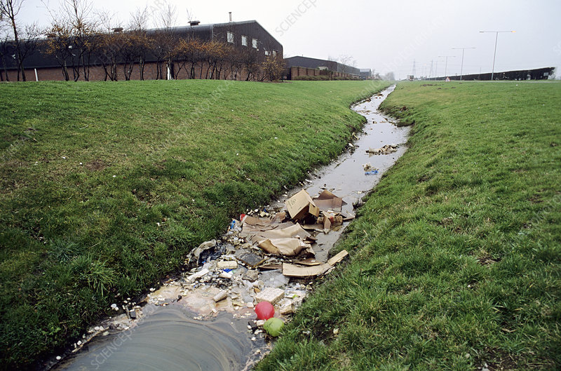 Polluted ditch