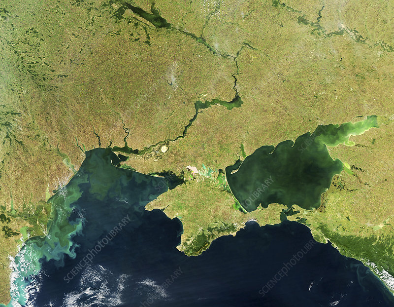 Phytoplankton blooms in the Black Sea