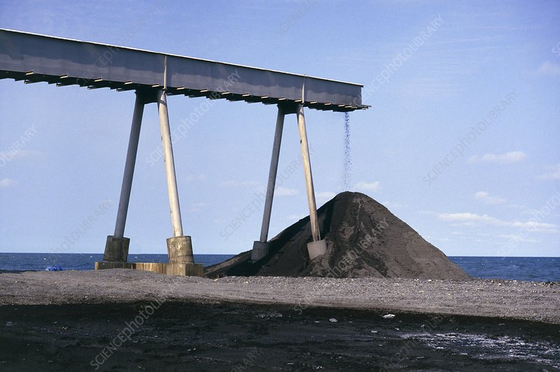 Coal dumped on coast