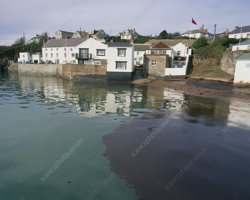 Oil slick coming ashore in a residential area