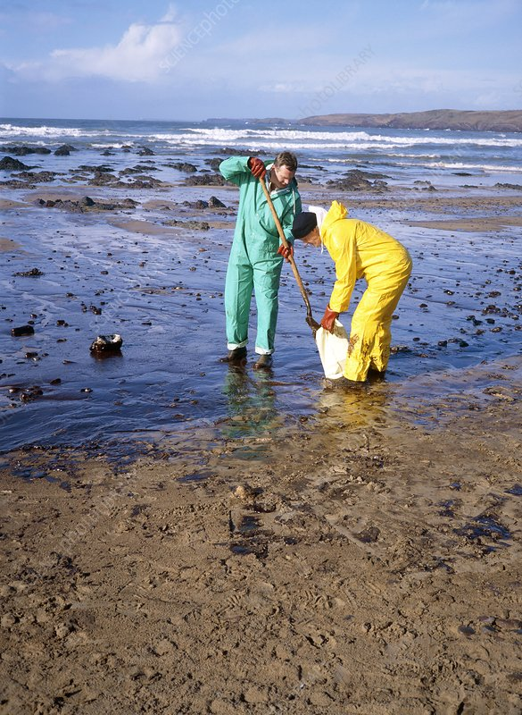 Workers cleaning up an oil slick on a beach