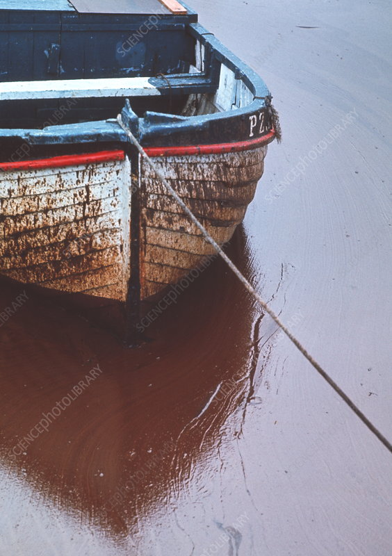 Boat in oil slick