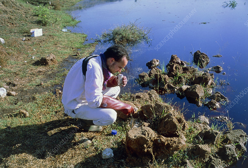 Scientist takes a sample for pollution monitoring