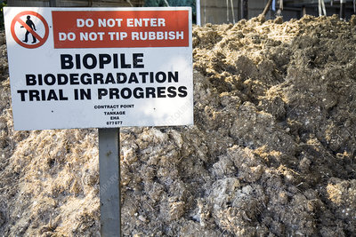 Biopile hydrocarbon pollution clean-up