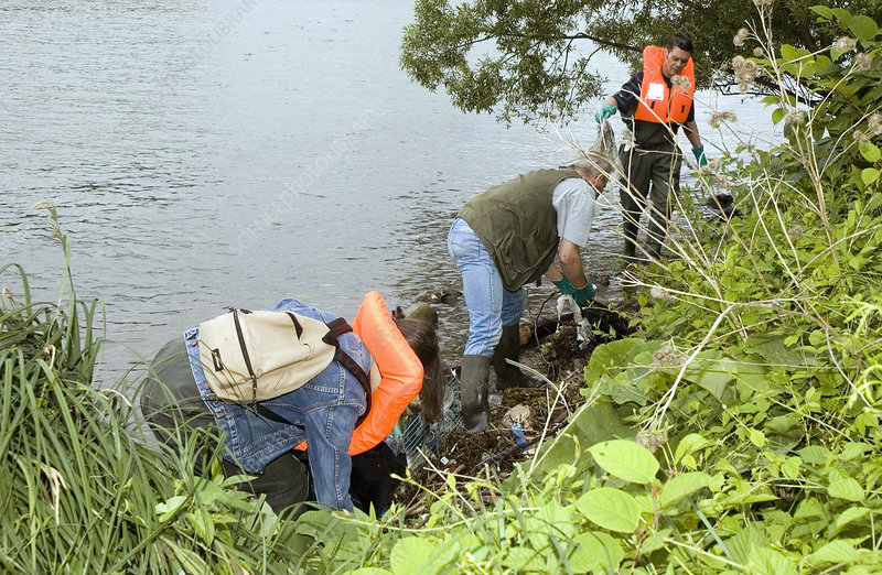 River pollution clean-up, volunteers