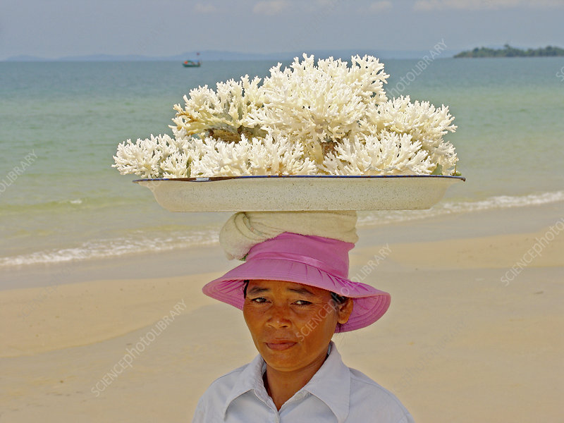 Woman selling coral