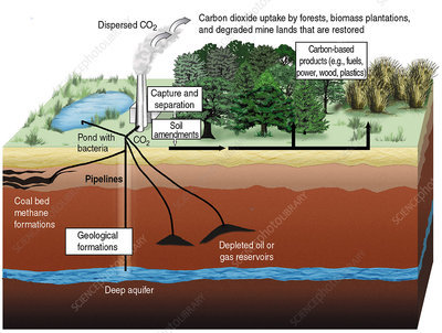 Carbon Dioxide sequestration