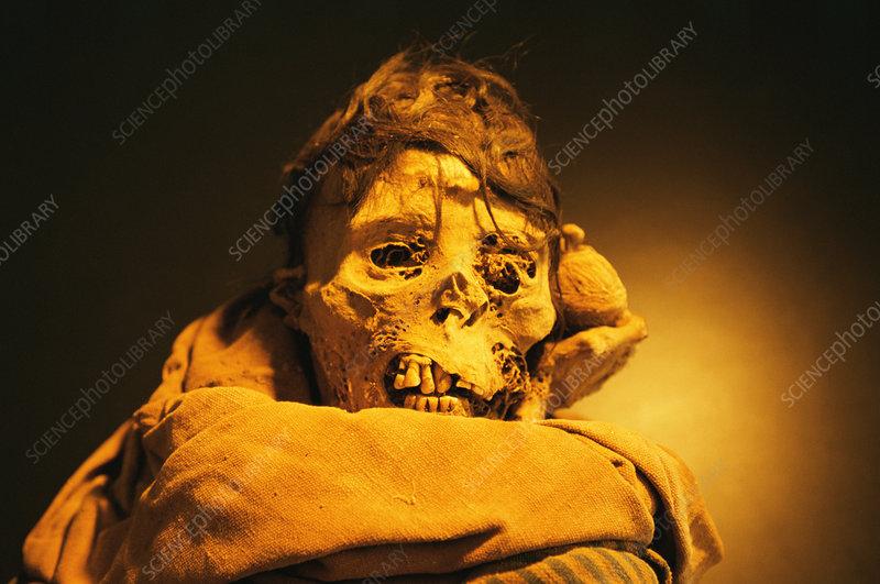 Chachapoyas mummy, Peru