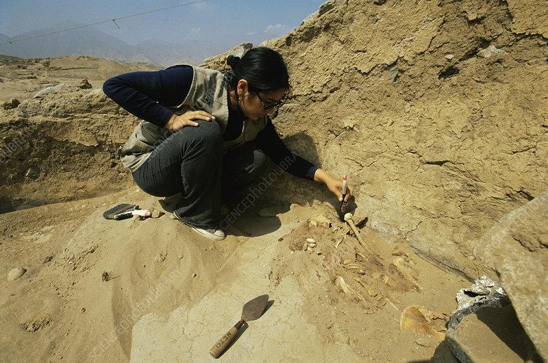 Human skeleton at Caral, Peru