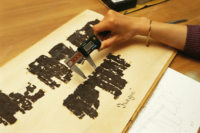 Researcher measuring papyrus scrolls