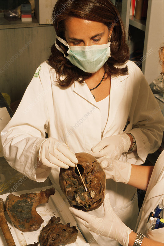 Pompeii skull being sampled in a lab
