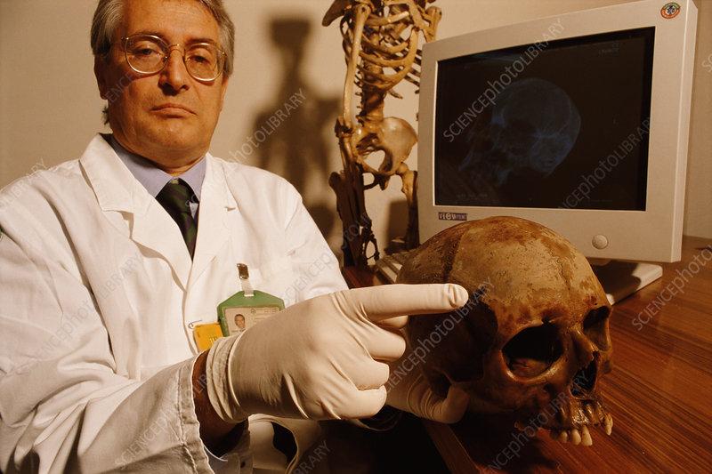 pompeii download skull