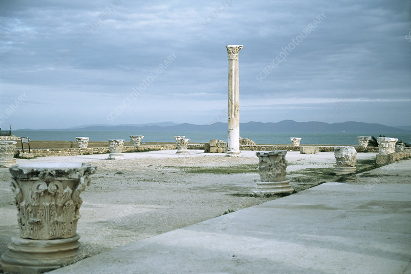Roman pillar at Carthage